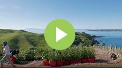 Living Earth and the Motutapu Trust